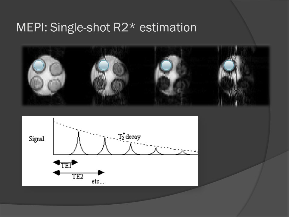 MEPI: Single-shot R2* estimation
