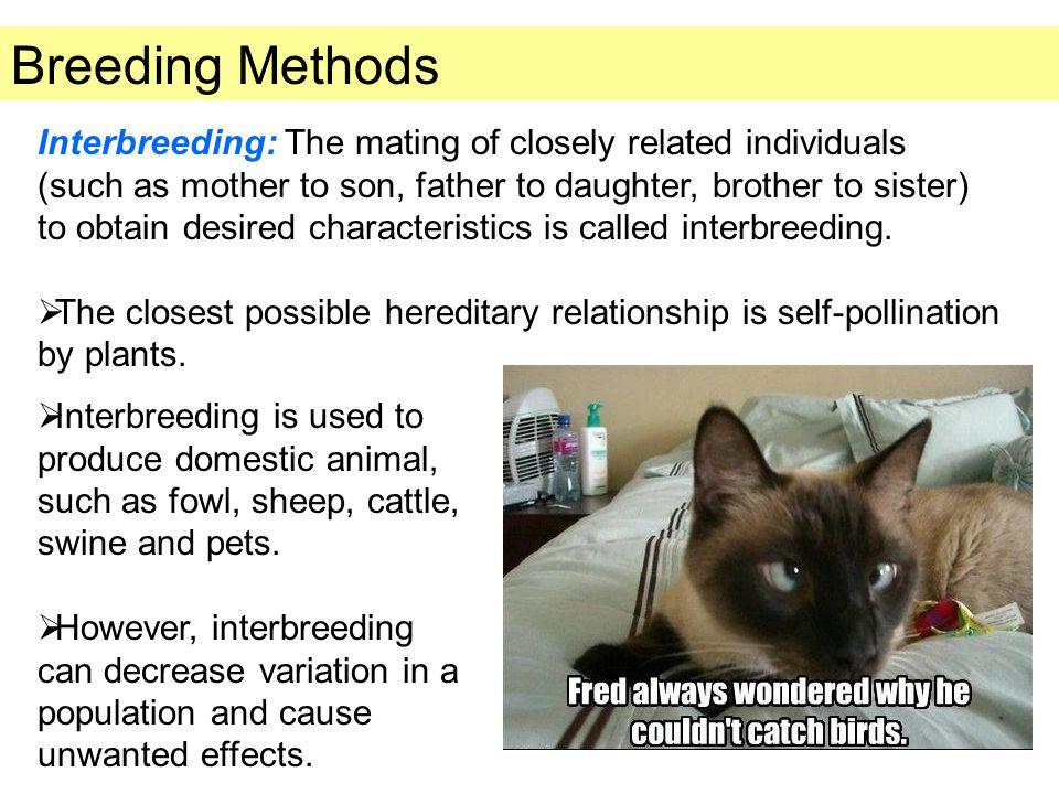 Methods of Genetic Engineering 3.