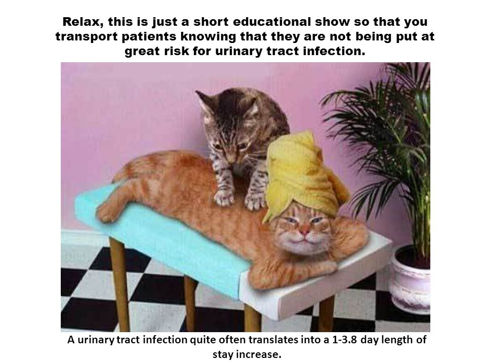 Relax, this is just a short educational show so that you transport patients knowing that they are not being put at great risk for urinary tract infect