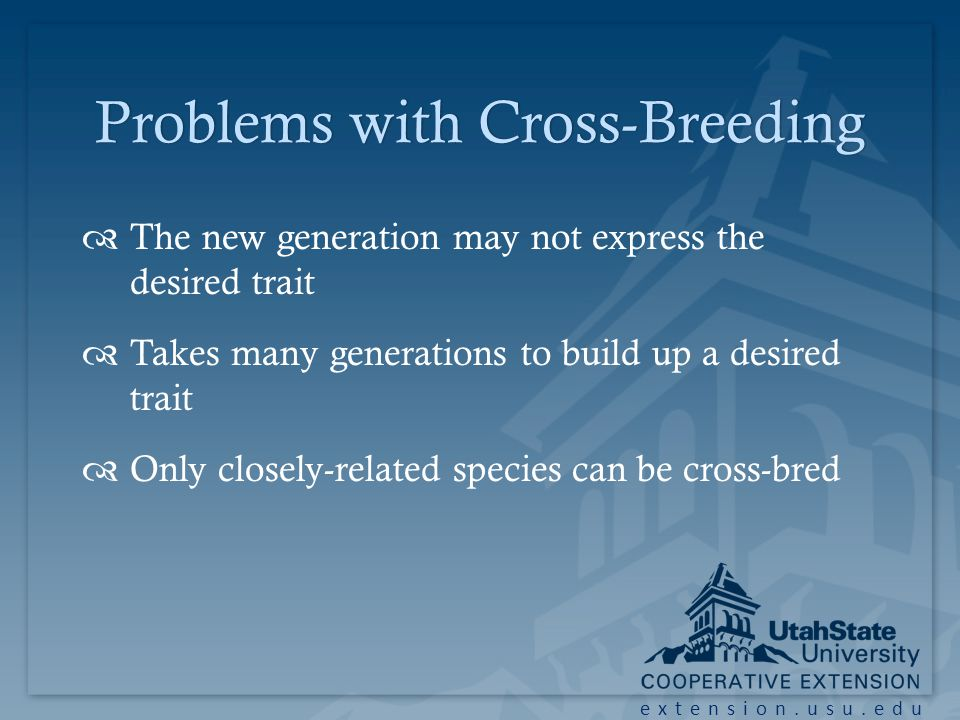 extension.usu.edu Problems with Cross-BreedingProblems with Cross-Breeding The new generation may not express the desired trait Takes many generations to build up a desired trait Only closely-related species can be cross-bred