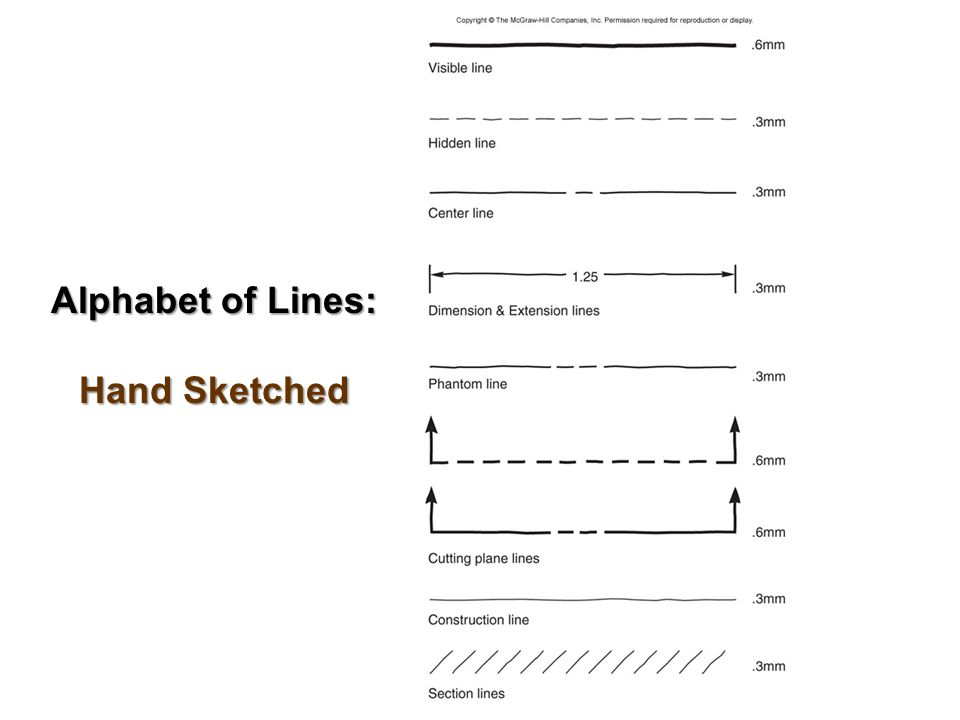 Alphabet of Lines: Hand Sketched