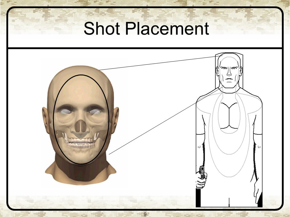 9 Shot Placement
