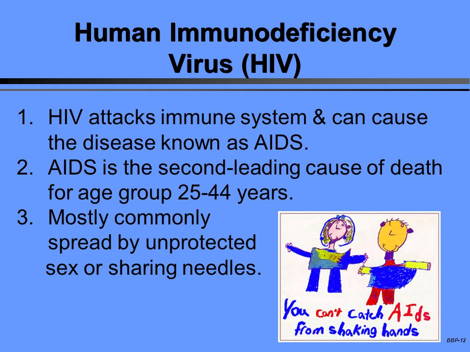 BBP-12 Human Immunodeficiency Virus (HIV) 1.HIV attacks immune system & can cause the disease known as AIDS. 2.AIDS is the second-leading cause of dea