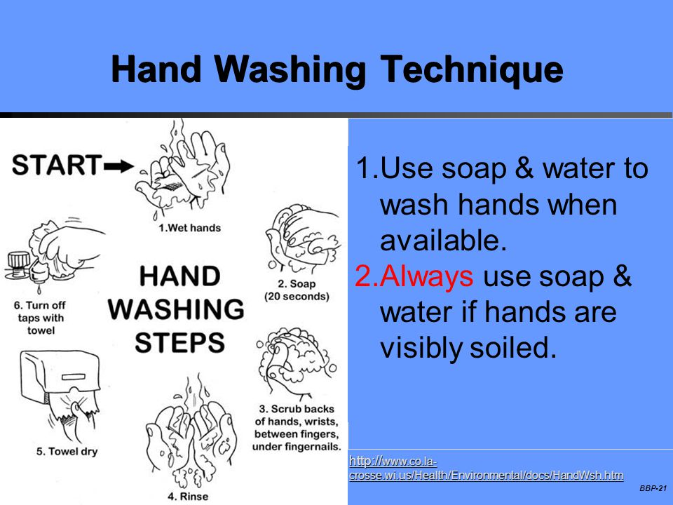 BBP-21 Hand Washing Technique http:// www.co.la- crosse.wi.us/Health/Environmental/docs/HandWsh.htm 1. 1.Use soap & water to wash hands when available