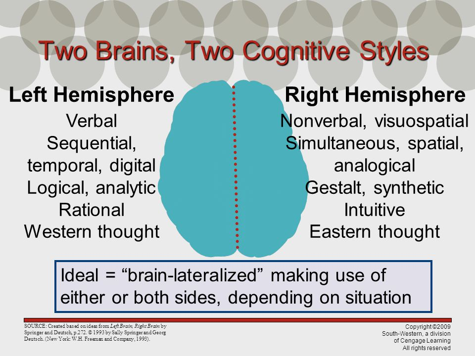 Copyright ©2009 South-Western, a division of Cengage Learning All rights reserved Two Brains, Two Cognitive Styles Left Hemisphere Verbal Sequential,