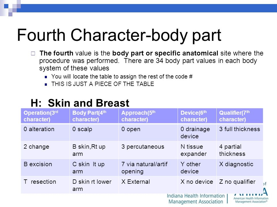 Fourth Character-body part The fourth value is the body part or specific anatomical site where the procedure was performed.