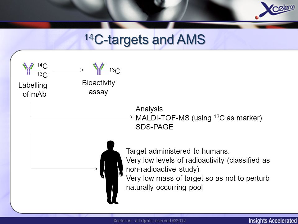 Xceleron - all rights reserved ©2012 14 C-targets and AMS Labelling of mAb 14 C 13 C Bioactivity assay Analysis MALDI-TOF-MS (using 13 C as marker) SDS-PAGE Target administered to humans.