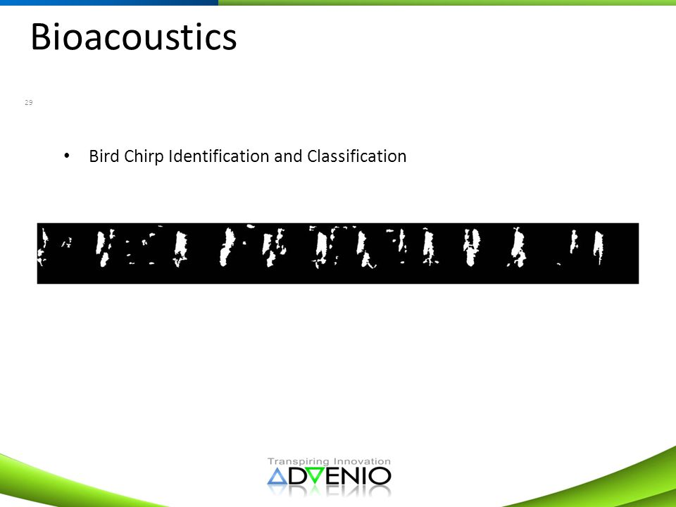 Bioacoustics 29 Bird Chirp Identification and Classification