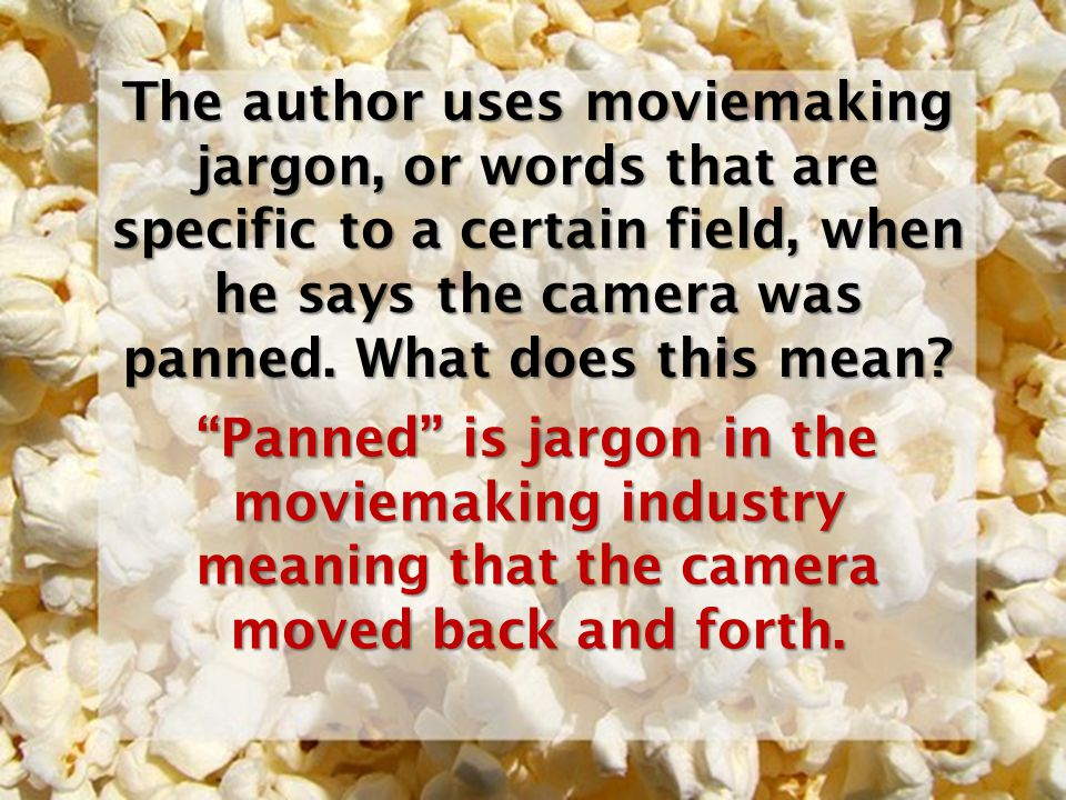 The author uses moviemaking jargon, or words that are specific to a certain field, when he says the camera was panned. What does this mean? Panned is