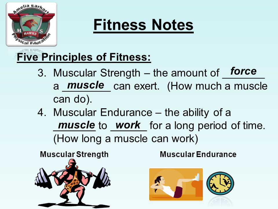 Fitness Notes Five Principles of Fitness: 3.Muscular Strength – the amount of _______ a ________ can exert.