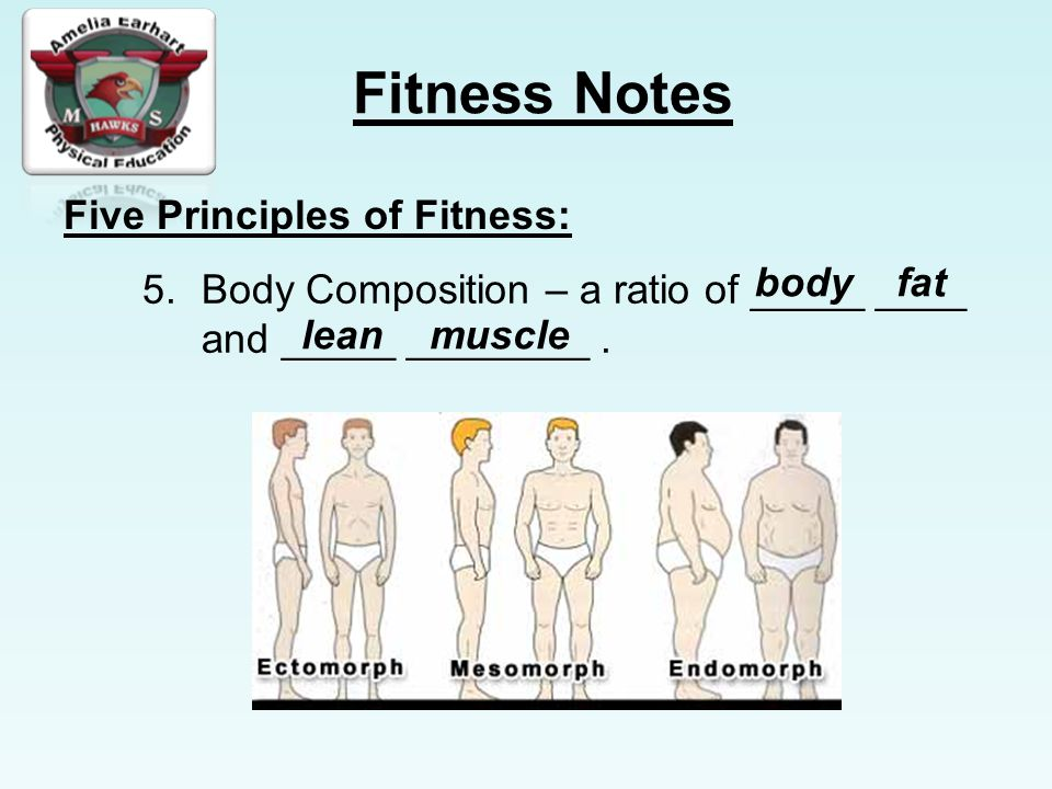 Fitness Notes Five Principles of Fitness: 5.Body Composition – a ratio of _____ ____ and _____ ________.