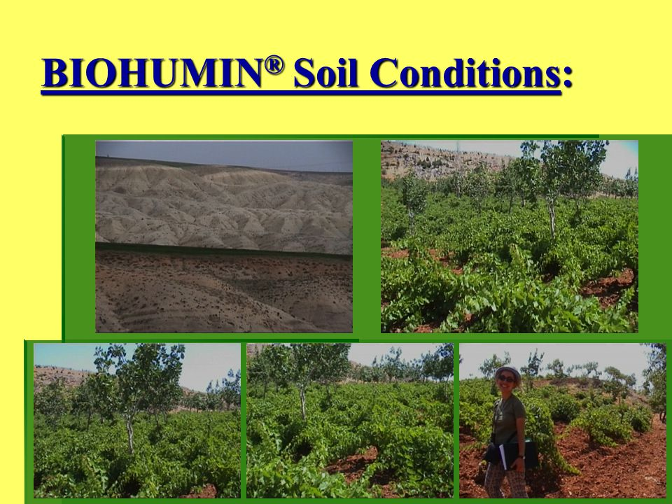 BIOHUMIN ® Soil Conditions: