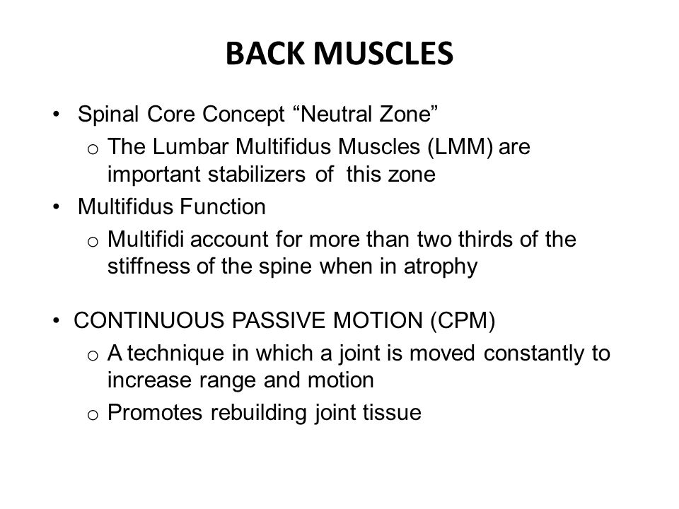BACK MUSCLES Spinal Core Concept Neutral Zone o The Lumbar Multifidus Muscles (LMM) are important stabilizers of this zone Multifidus Function o Multifidi account for more than two thirds of the stiffness of the spine when in atrophy CONTINUOUS PASSIVE MOTION (CPM) o A technique in which a joint is moved constantly to increase range and motion o Promotes rebuilding joint tissue