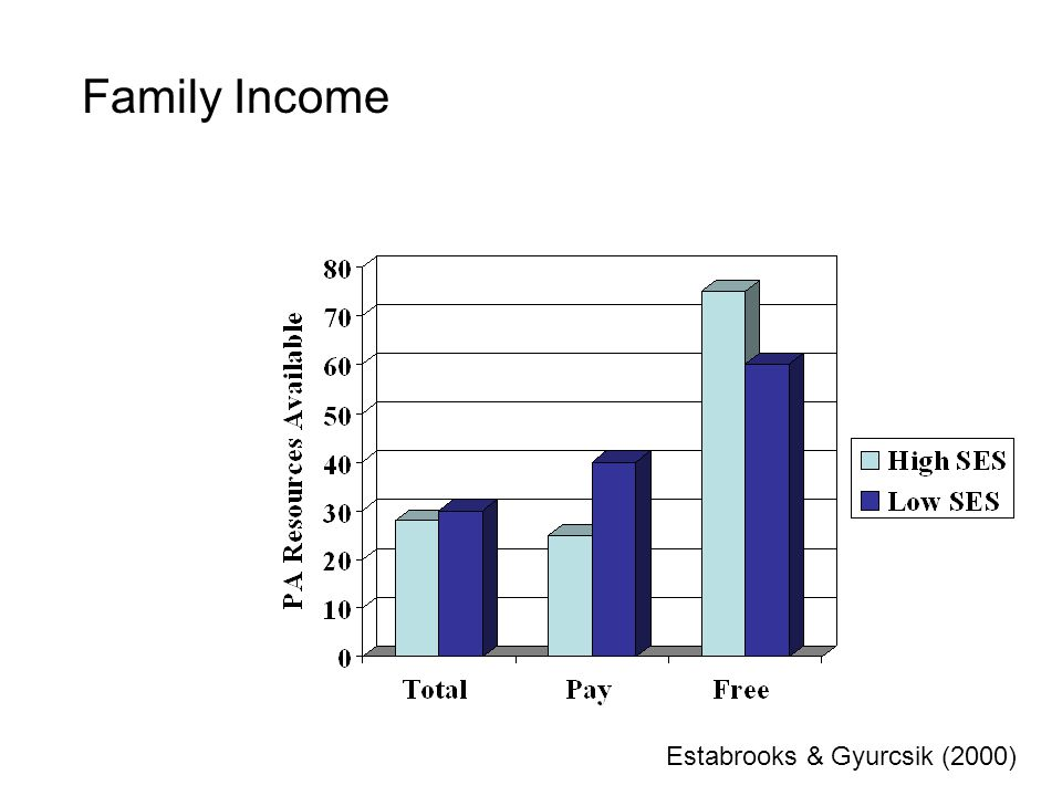 Family Income Estabrooks & Gyurcsik (2000)