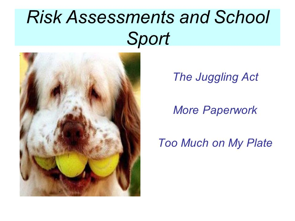 Risk Assessments Made Easy Develop a proforma Use existing resources DET Guidelines Sport and Physical Activity School Sport Memoranda DET Excursion Policy DET Policies and Procedures Venue Management Risk Assessments Risk Assessments and School Sport