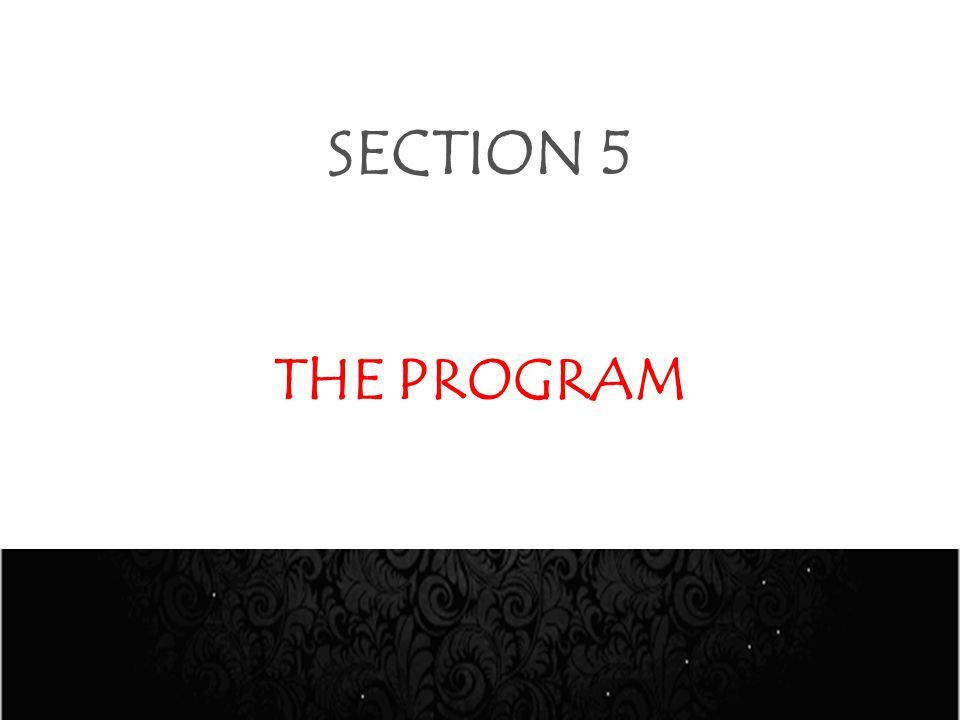 SECTION 5 THE PROGRAM