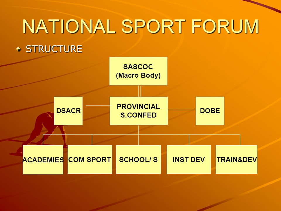 NATIONAL SPORT FORUM STRUCTURE SASCOC (Macro Body) DSACR PROVINCIAL S.CONFED DOBE ACADEMIES COM SPORTSCHOOL/ SINST DEVTRAIN&DEV