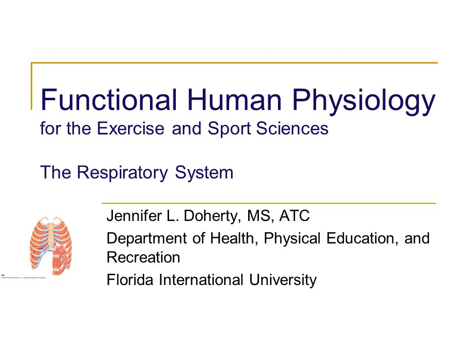 Functional Human Physiology for the Exercise and Sport Sciences The Respiratory System Jennifer L. Doherty, MS, ATC Department of Health, Physical Edu