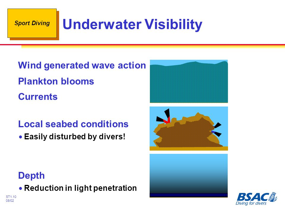 Sport Diving ST1.10 08/02 Underwater Visibility Wind generated wave action Plankton blooms Currents Local seabed conditions !Easily disturbed by divers.