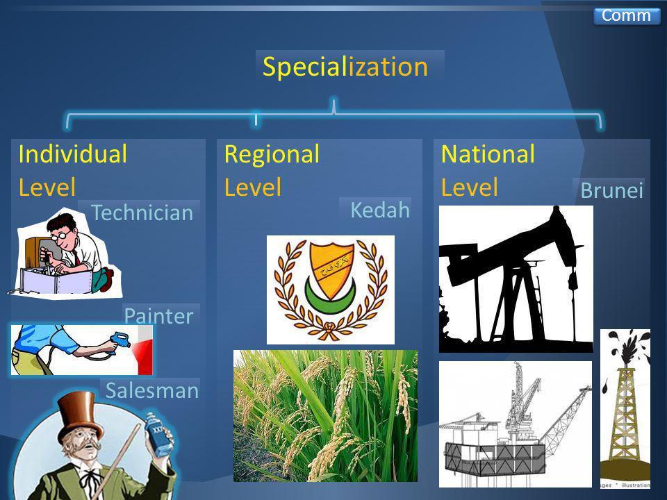 Specialization Regional Level Individual Level National Level Brunei Comm Painter Kedah Salesman Technician