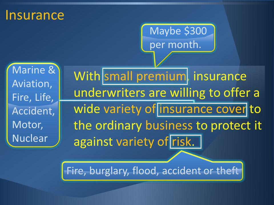 Insurance With small premium, insurance underwriters are willing to offer a wide variety of insurance cover to the ordinary business to protect it against variety of risk.