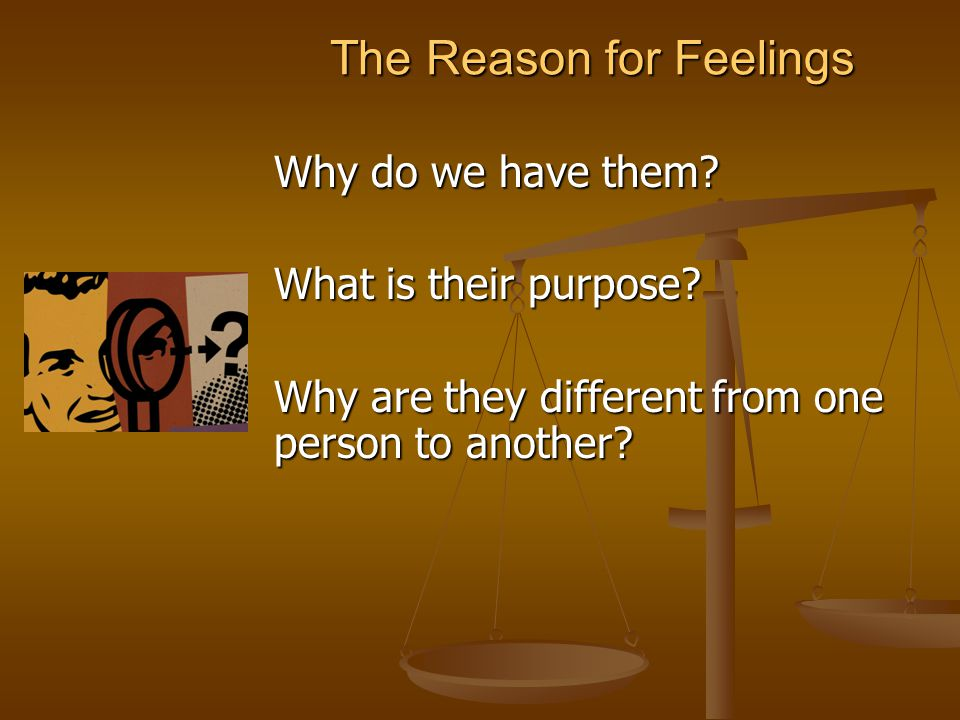 The Reason for Feelings Why do we have them. What is their purpose.