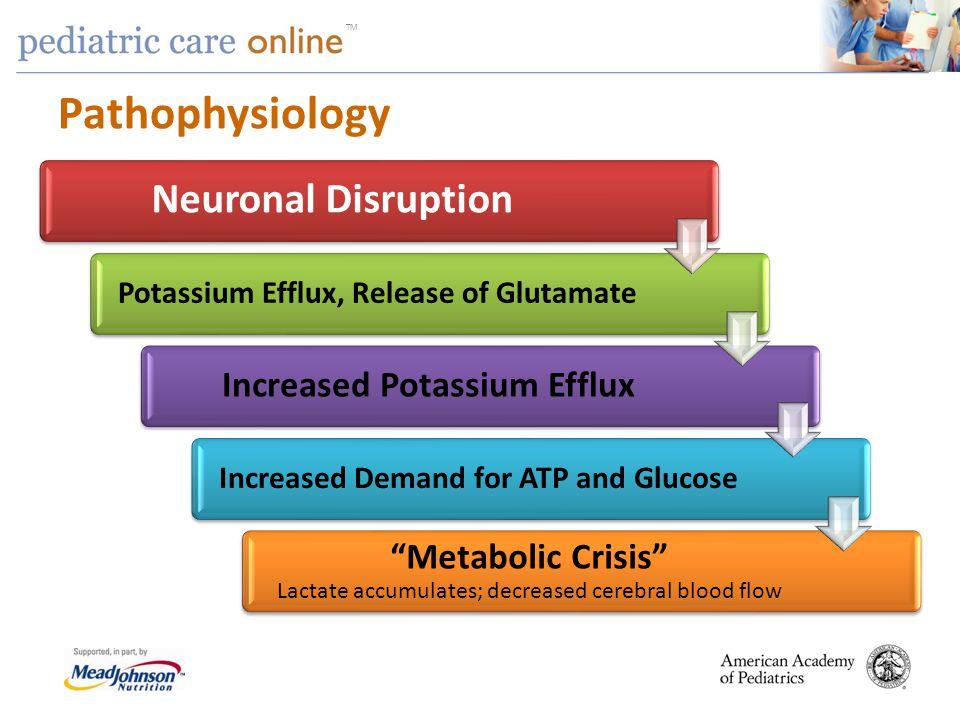 TM Pathophysiology Neuronal Disruption Potassium Efflux, Release of Glutamate Increased Potassium Efflux Increased Demand for ATP and Glucose Metaboli