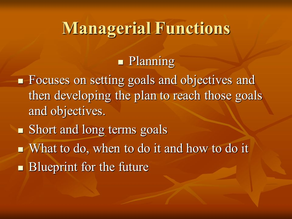 Managerial Functions Planning Planning Focuses on setting goals and objectives and then developing the plan to reach those goals and objectives.