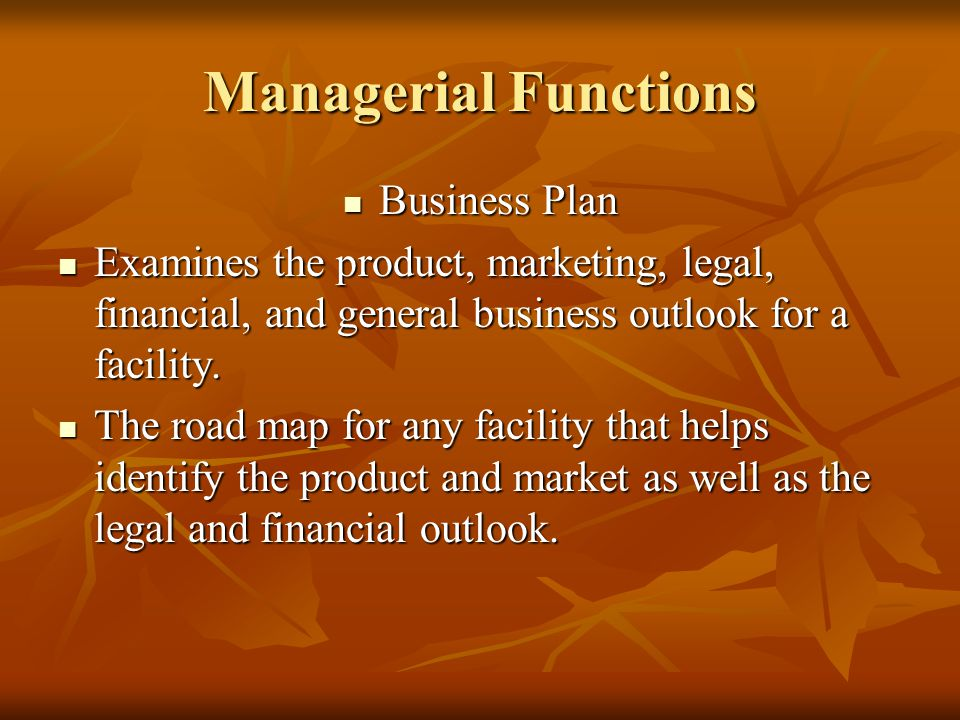 Managerial Functions Business Plan Business Plan Examines the product, marketing, legal, financial, and general business outlook for a facility.