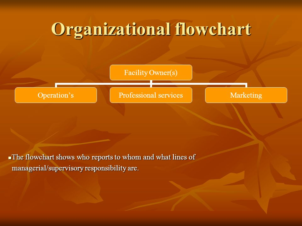 Organizational flowchart Facility Owner(s) Operations Professional services Marketing The flowchart shows who reports to whom and what lines of The flowchart shows who reports to whom and what lines of managerial/supervisory responsibility are.
