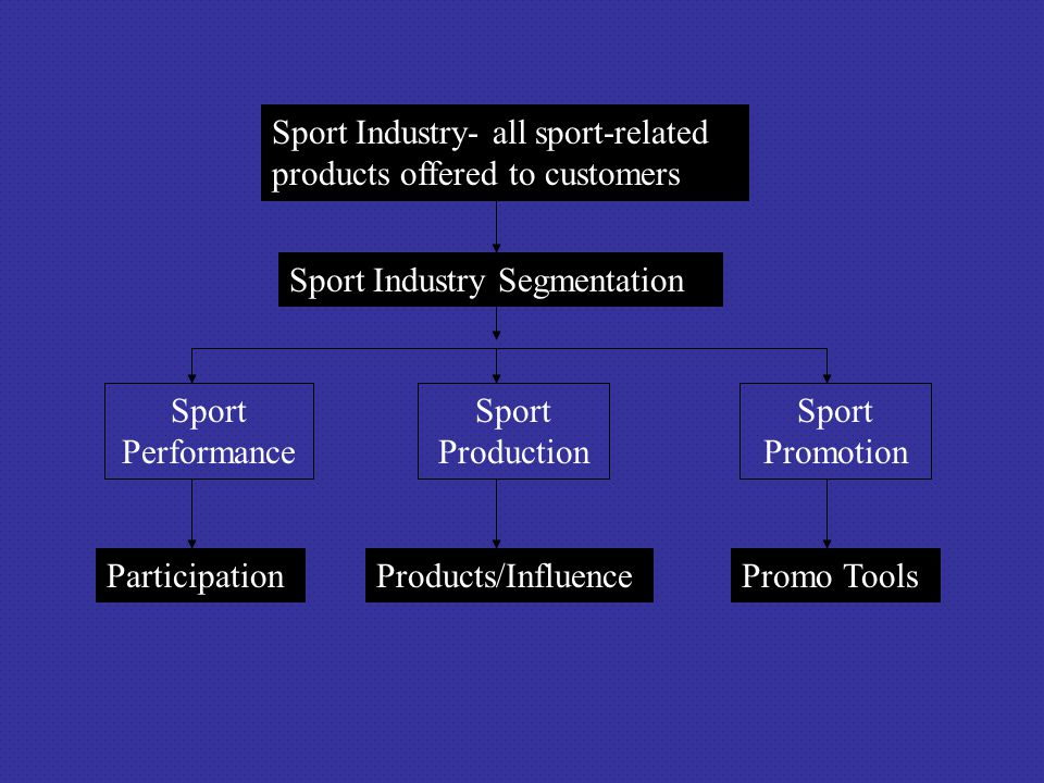 Sport Industry- all sport-related products offered to customers Sport Performance Sport Production Sport Promotion Sport Industry Segmentation Partici