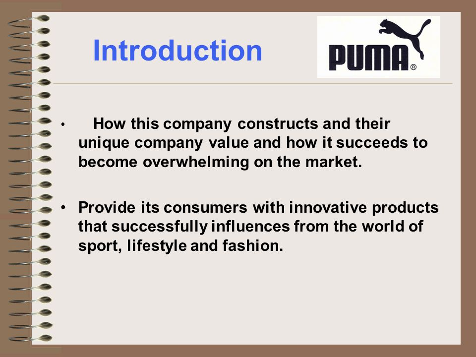 Introduction How this company constructs and their unique company value and how it succeeds to become overwhelming on the market.