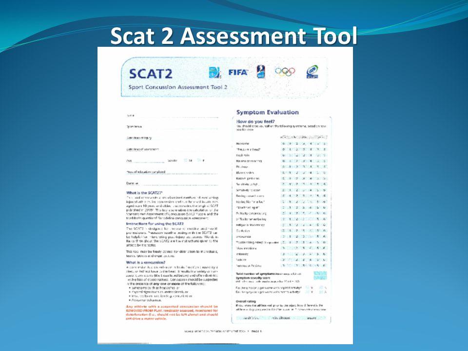 Scat 2 Assessment Tool
