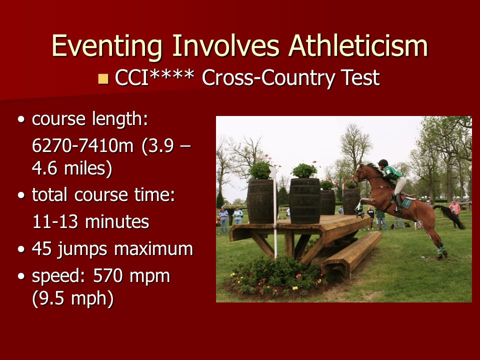 Eventing Involves Athleticism many muscles are used in Eventing many muscles are used in Eventing