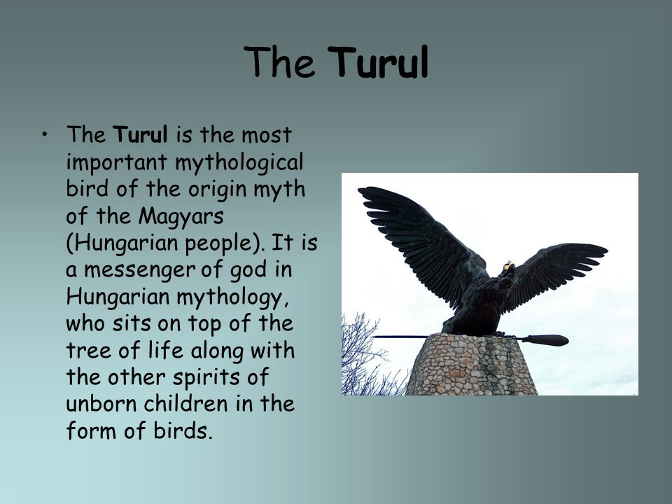 The Turul The Turul is the most important mythological bird of the origin myth of the Magyars (Hungarian people). It is a messenger of god in Hungaria