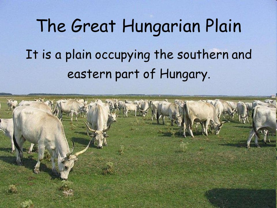 The Great Hungarian Plain It is a plain occupying the southern and eastern part of Hungary.