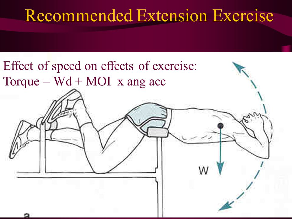 Recommended Extension Exercise Effect of speed on effects of exercise: Torque = Wd + MOI x ang acc
