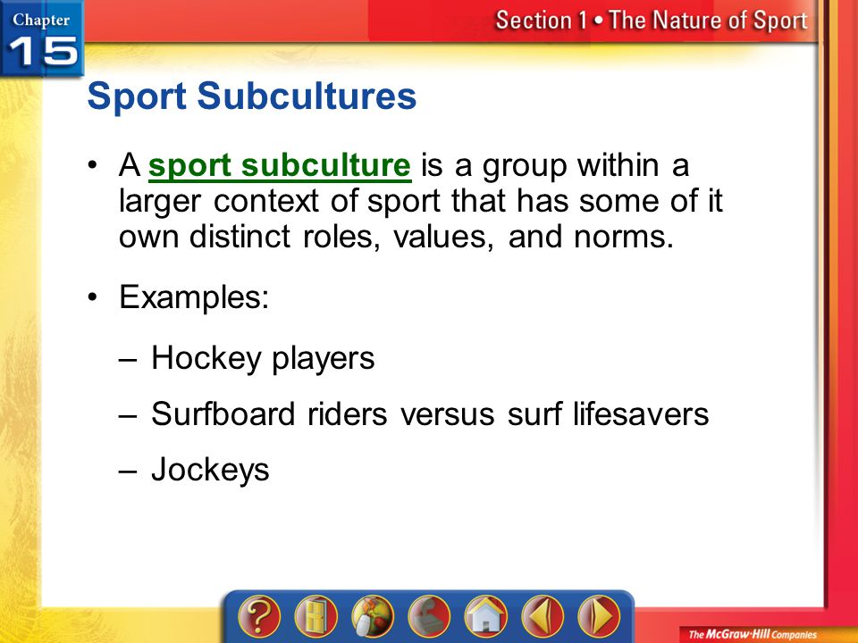 Section 1 Sport Subcultures A sport subculture is a group within a larger context of sport that has some of it own distinct roles, values, and norms.s