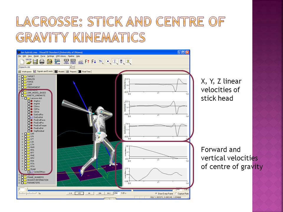 X, Y, Z linear velocities of stick head Forward and vertical velocities of centre of gravity