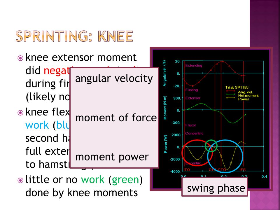 knee extensor moment did negative work (red) during first half of swing (likely not muscles) knee flexors did negative work (blue) during second half to prevent full extension (likely due to hamstrings) little or no work (green) done by knee moments angular velocity moment of force moment power swing phase