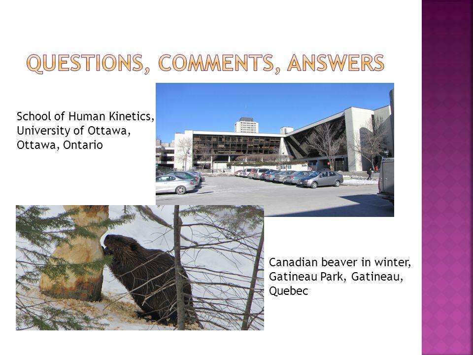 School of Human Kinetics, University of Ottawa, Ottawa, Ontario Canadian beaver in winter, Gatineau Park, Gatineau, Quebec