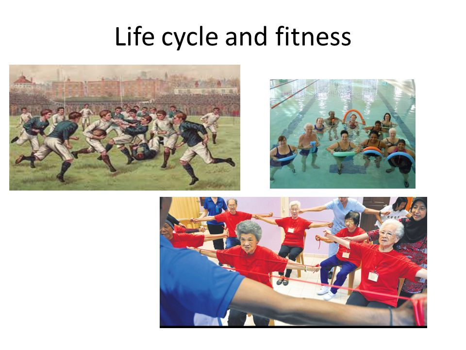 Life cycle and fitness