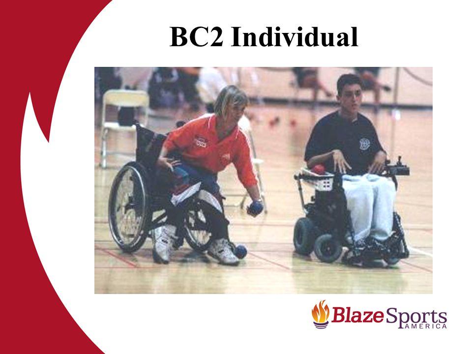 BC2 Individual