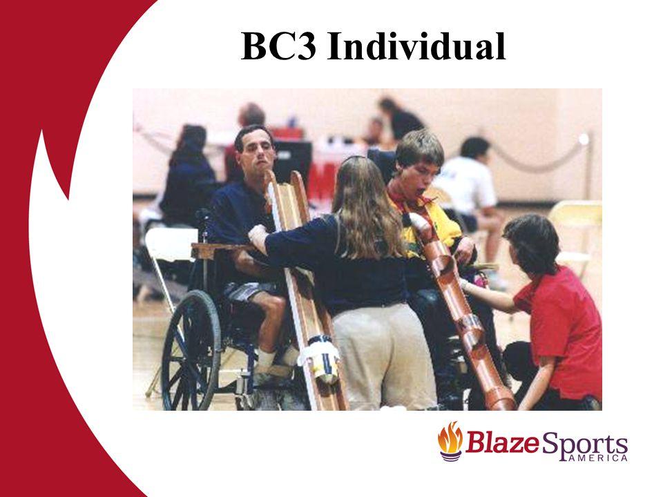 BC3 Individual