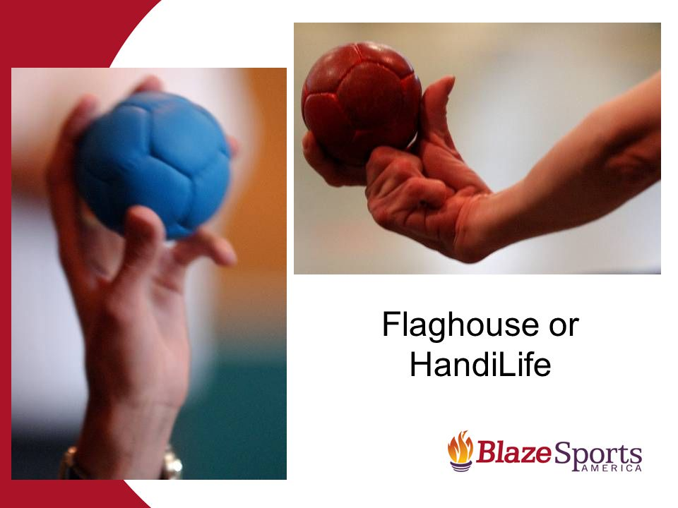 Flaghouse or HandiLife