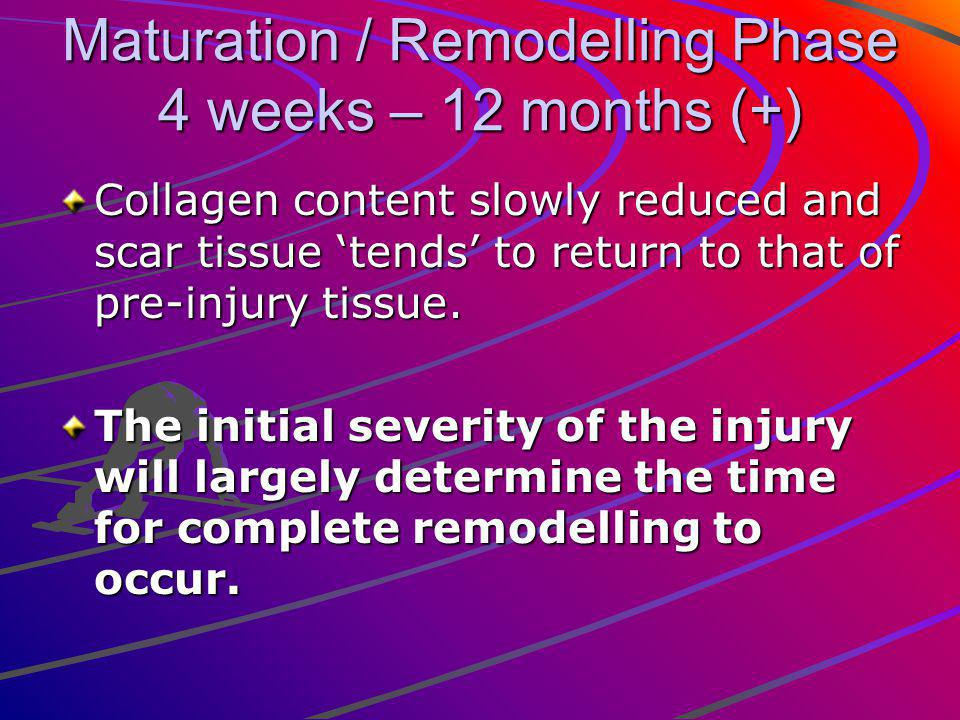 Maturation / Remodelling Phase 4 weeks – 12 months (+) Collagen content slowly reduced and scar tissue tends to return to that of pre-injury tissue.