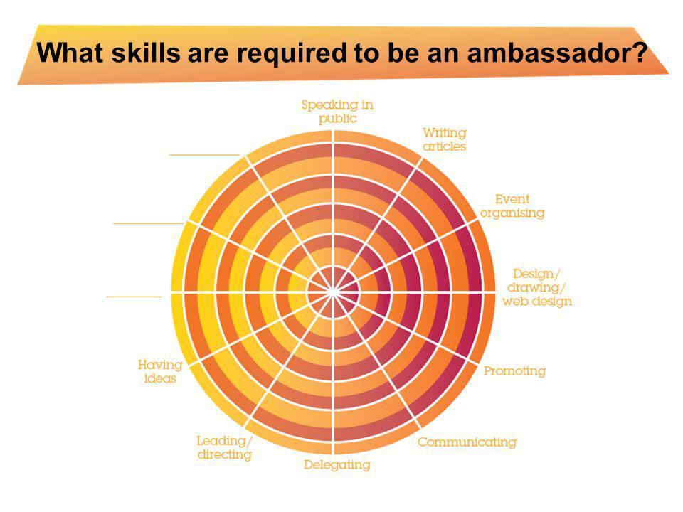 What skills are required to be an ambassador