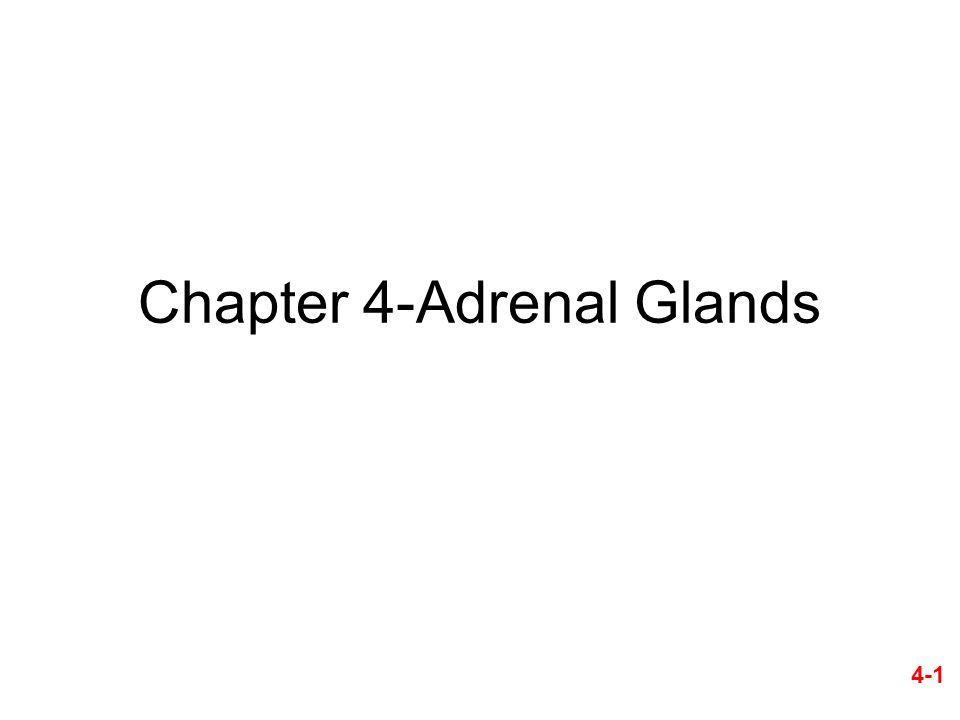 Chapter 4-Adrenal Glands 4-1