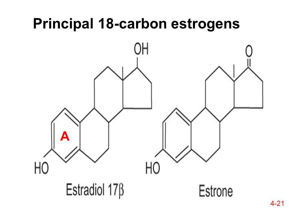 Principal 18-carbon estrogens A 4-21