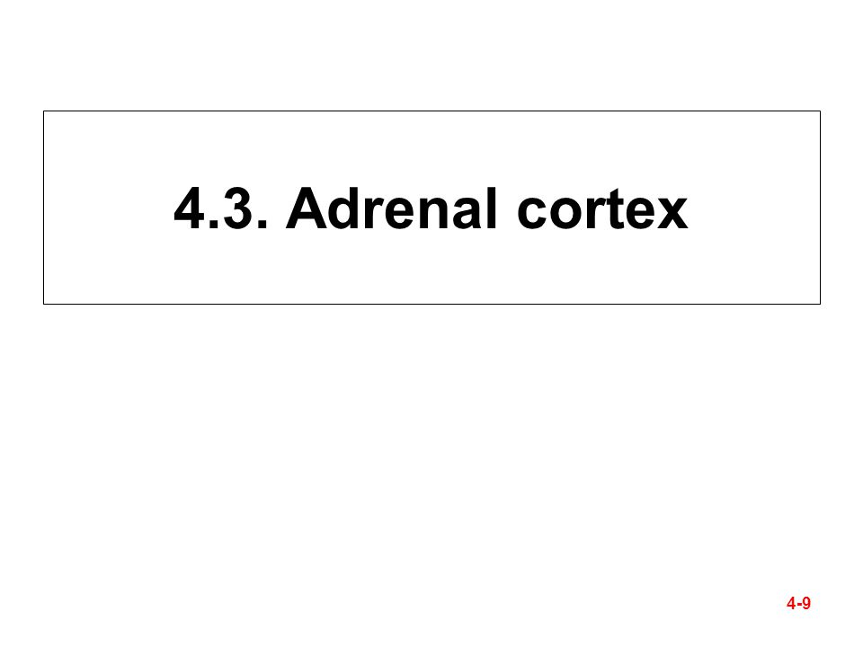 4.3. Adrenal cortex 4-9